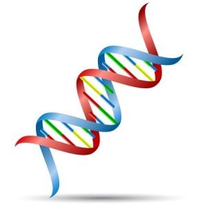 43135177_s DNA
